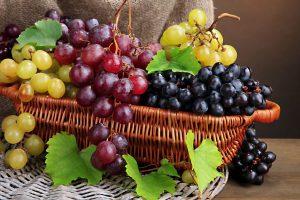 Découverte des produits et marchés de saison, visite guidée terroir