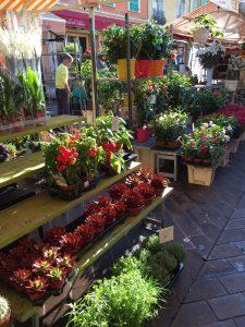 cours saleya vieux marché aux fleurs Nice